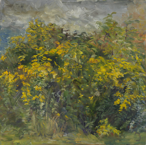 goldenrod-oil-on-canvas-2006-20-x-16.jpg